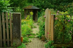 8 Basic Principles of Landscape Design